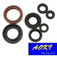 ENGINE SEAL KIT EXC450 + SX450 + SX505 08/10