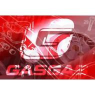 PISTON 2 AROS GAS GAS TRIAL JTR 270 - B
